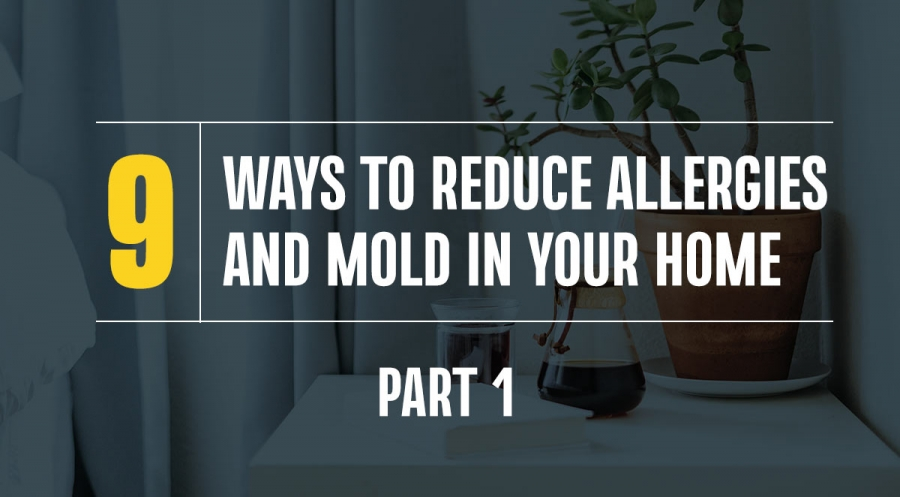 Nine Ways to Reduce Allergies and Mold in Your Home, Part 1