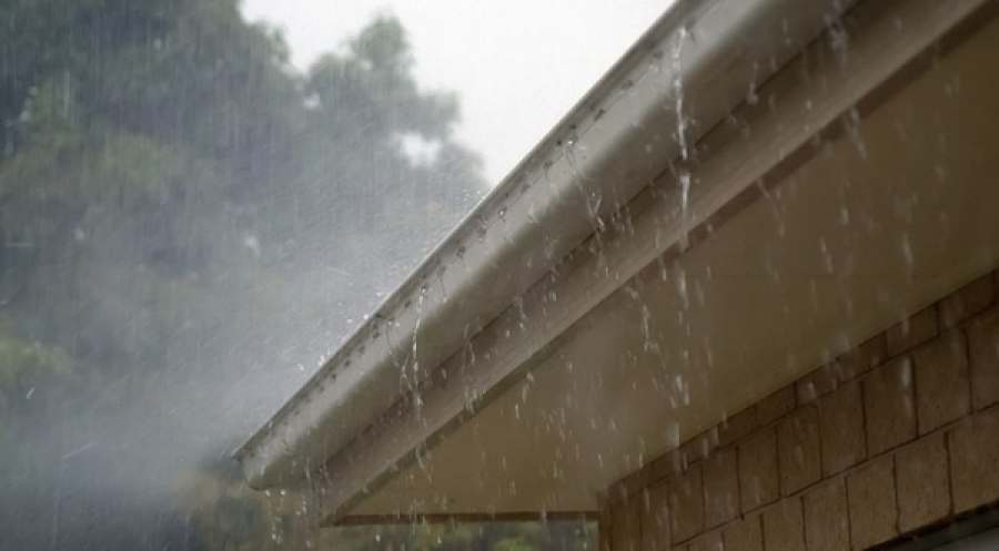 Four Things You Need To Know About Drainage and Mold After the Rain