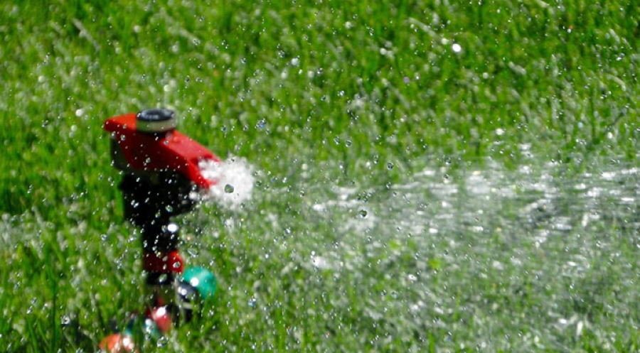 10 Tips for Reducing Water Usage During Summer Part 1