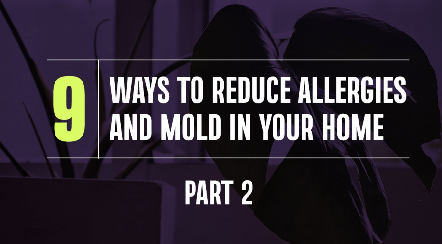Nine Ways to Reduce Allergies and Mold in Your Home, Part 2